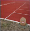 canudiglett: (athletics diglett)