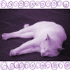 purplefluffycat: (Purple Cat) (Default)