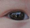 erbie: (Edgar Eye)