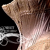 nadjarachel_import: (corsetry/garb)