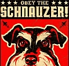 razzleccentric: (Obey the Schnauzer)