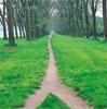 razzleccentric: (Two Paths)