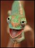 chameleon_creature: (Default)