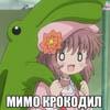 shokaku_2: (Мимо крокодил)