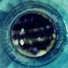 pivovision: (blueglass)