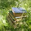 michikatinski: (books)