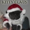 snufflesdbear: (xmas kittyclaws)