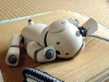 baratron: (cute, sleepy, aibo)