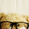 remys_haven: (geeky bear)