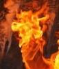 dammerschlaf: (пламя, пожар)