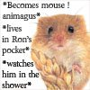 shocolate: (mouse!animagus)