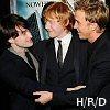 shocolate: (Hary/Ron/Draco)