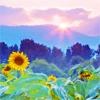 elberethmyrrh: (Sunfield)