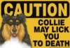 jcollie719: (Collie Lick Sign)