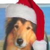jcollie719: (Christmas Collie)