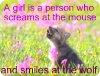 onyxwolf: (Pup)