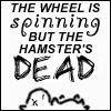 shevabree: (Hamster)