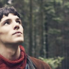 tierfal: (Merlin - Cheekbones Are Indigenous)