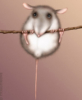 ria_ria: (мышь)