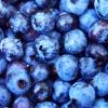plicease: (Blue)