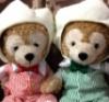 almond18: (sakuraiba bear)