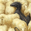 stormdragon: (Misc : Sheeps n' a Dragon)