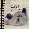 sarahblack: (Cute, polar bear)
