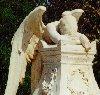 carolecummings: (angel)