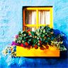 fliz0ntoast: (Flower Box)
