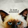 keurisuho: (cat :: unamused)