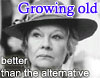 """hermionesviolin: black and white photo of Judi Dench in Tea with Mussolini, wearing a hat and looking somewhat disdainfully off to the viewer's left, with purple text """"Growing old"""" above her and white text """"better than the alternative below her"""" (i shall wear purple)"""
