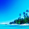 xenodike: (vit strand, turkost hav, plamer)
