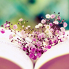 xenodike: (Purple flowers in book)