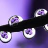 xenodike: (purple waterdrops)
