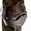 ada_hoffmann: velociraptor looking at the camera (argue - raptor)