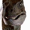 ada_hoffmann: velociraptor looking at the camera (Default)