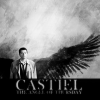 trobadora: (Castiel - black wings)