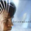 tallihensia: (Clark - determined)