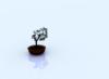 sinthrex: (Zen Tree)