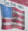 elainetyger: (god bless america)
