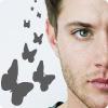 strgazr04: (Jensen butterfiles)