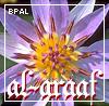 spqrblues: (scent: al-araaf)