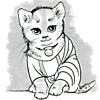spqrblues: (Toga Kitten)