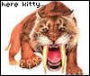 redheadedfemme: (here kitty smilodon)