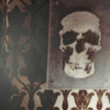 morganstuart: by callmefoo (Five Ghost Stories)
