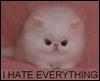skatie: (Hate)