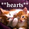 momsalive1: (kitten hearts)