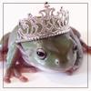 ghoti_mhic_uait: (Frog princess)