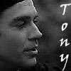 nofaves: (b/w Tony)