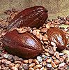 strange_complex: (Cocoa beans)